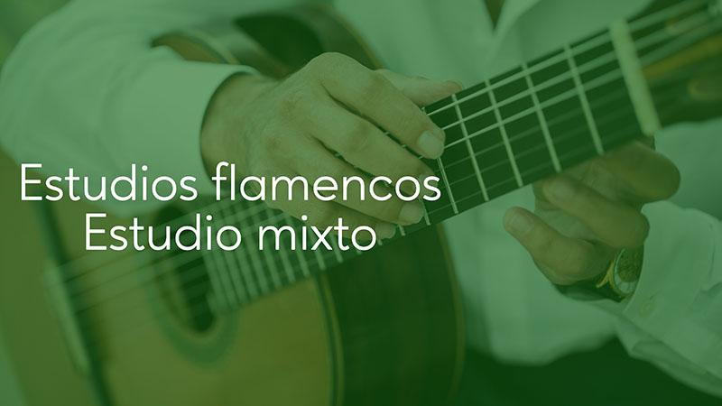 Spanish Guitar Academy. Estudios Flamencos: Estudio mixto.